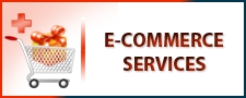 PakEagle.Com.Pk Pak Eagle Enterprises E-Commerece Services